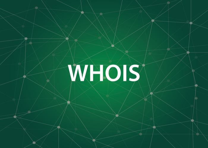 The Advantages Of WHOIS Lookup For Business Websites