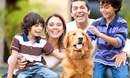 How To Choose The Right Pet Insurance Plan